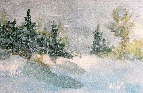 Winter Woodland 16