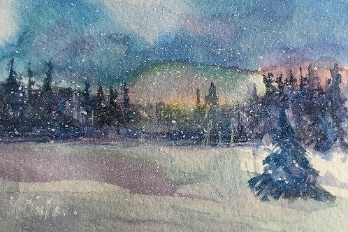 Winter Woodland 8