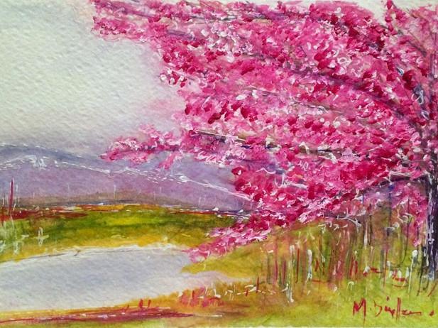 Oh Cherry Blossom