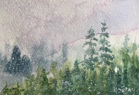 Winter Woodland 12
