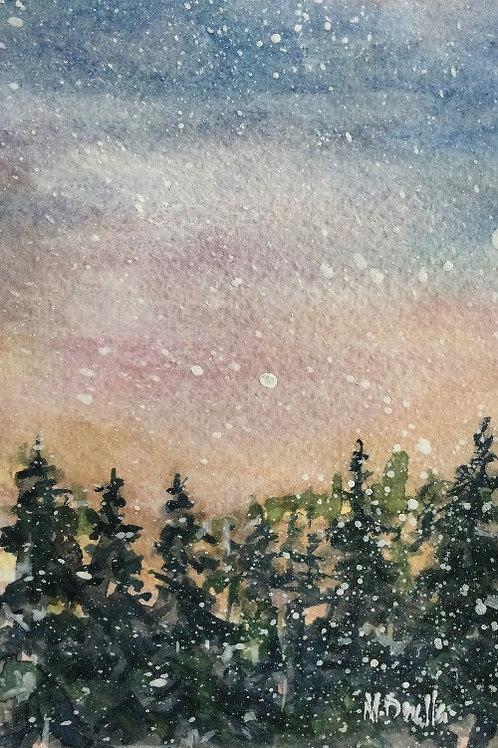Winter Woodland 11