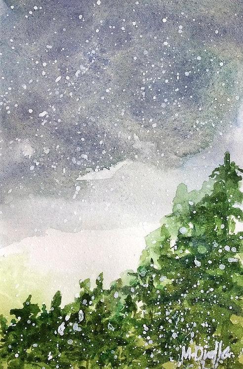 Winter Woodland 4