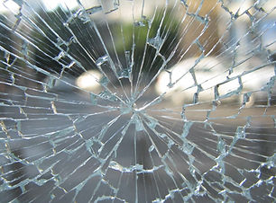 window-glass-broken-material-invertebrat