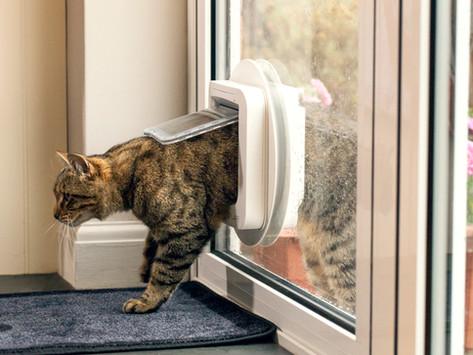 Cat Flaps Into Double Glazed Units