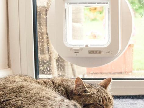 Installation of Cat Flaps Manchester,Warrington,Stockport