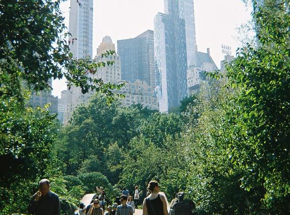 Central Park Commuters