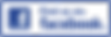 facebook-fan-page-logo-png.png