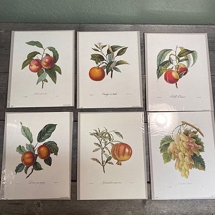 Fauna prints