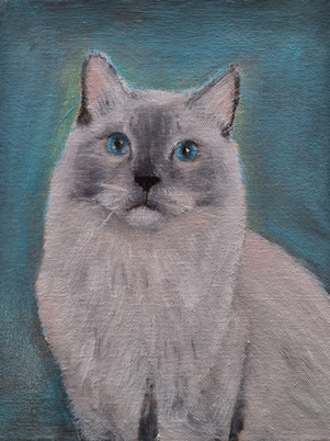 Digby Oil Painting | Cat Oil Portrait