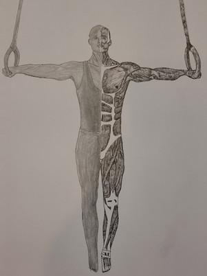 Gymnatomy #2