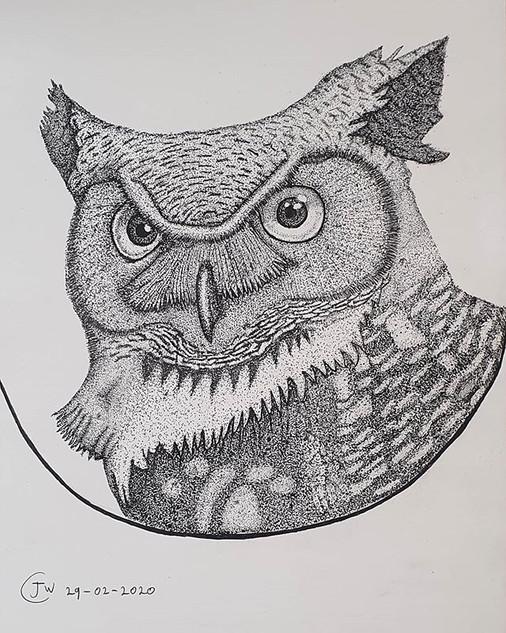 Pointillism Owl Drawing by James Carter Art