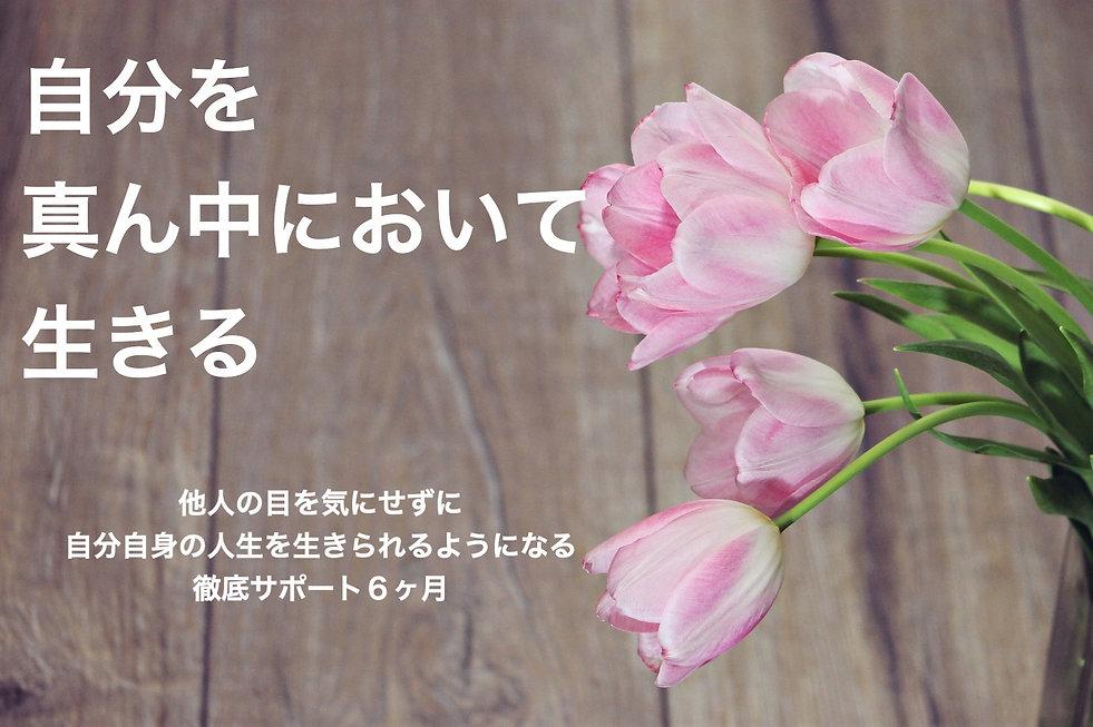 flower-3215157_1920_edited.jpg
