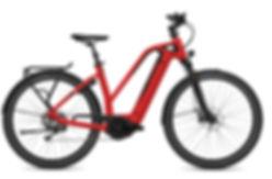 FLYER_E-Bikes_Gotour6_770_Mixed_ClassicR