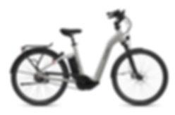 FLYER_E-Bikes_Gotour5_723_Comfort_CastSi