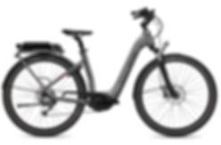 FLYER_E-Bikes_Gotour2_510_Comfort_Silver