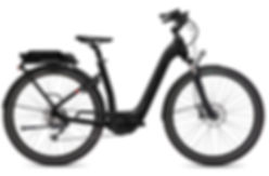 FLYER_E-Bikes_Gotour2_510_Comfort_BlackM