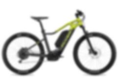 FLYER_E-Bikes_Uproc1_450_Hardtail_DB_Ant