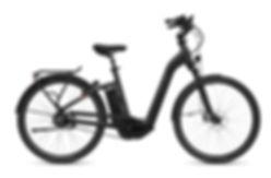 FLYER_E-Bikes_Gotour5_723_Comfort_PearlB