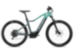 FLYER_E-Bikes_Uproc1_450_Hardtail_Pigeon