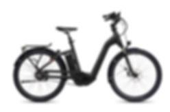 FLYER_E-Bikes_Gotour4_723_Comfort_PearlB
