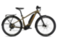 FLYER_E-Bikes_Goroc2_650_Hardtail_Vintag