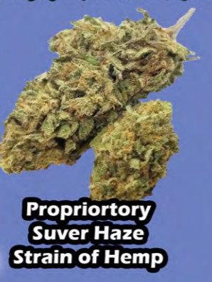 GREEN FLASH bud 7 gram MYLAR BAG