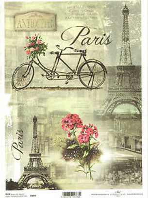ParisiaCycle- Rice Paper