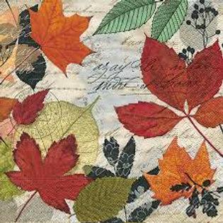 Herbarium - Decoupage Napkin