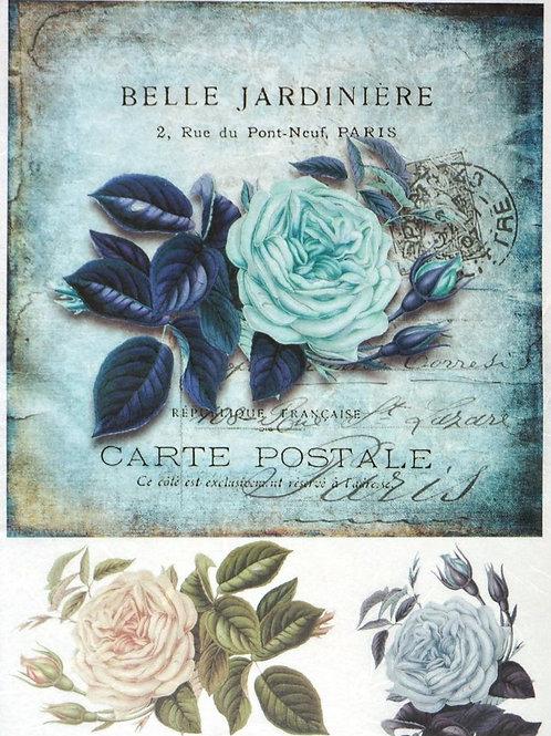 Carte Postale - Rice Paper