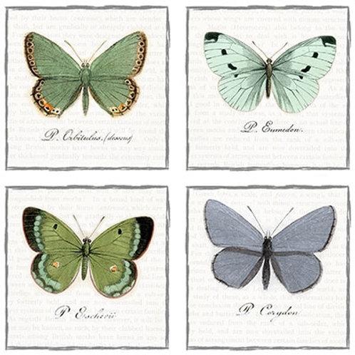 Vintage Butterfly- Decoupage Napkin