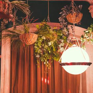 Hanging plants Revolucion De Cuba Nottingham