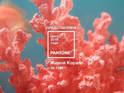 Цвет 2019 года живой коралл (Living Coral)
