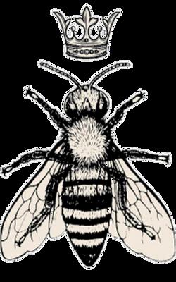 The Hive Salon & Spa