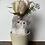 Thumbnail: Rose Cat:(ローズ)