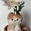 Thumbnail: Gerbera:Meowbera(ガーベラ)