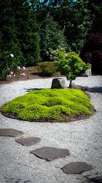 elegance and zen of simplicity with unique tree specimen Installation of rock garden installed my Opal Creek Landscapes.