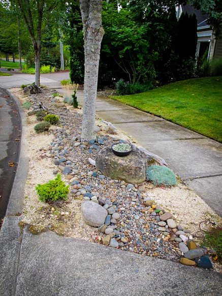 We designed a simple rock garden where lawn grass was originally installed and couldn't survive. The tree roots from the shallow rooted Maples took all the nutrients and sun for the lawn, so we complimented instead of combated.   Installation by home owner.