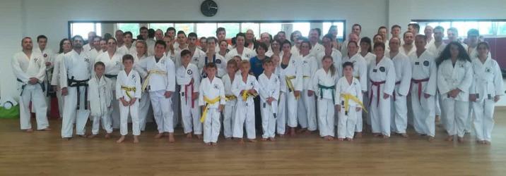 Taekwondo Lehrgang 2018