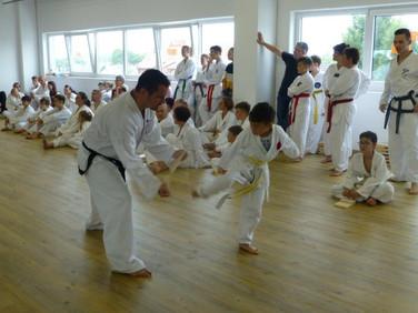Taekwon Do Kick im Bodyfeeling