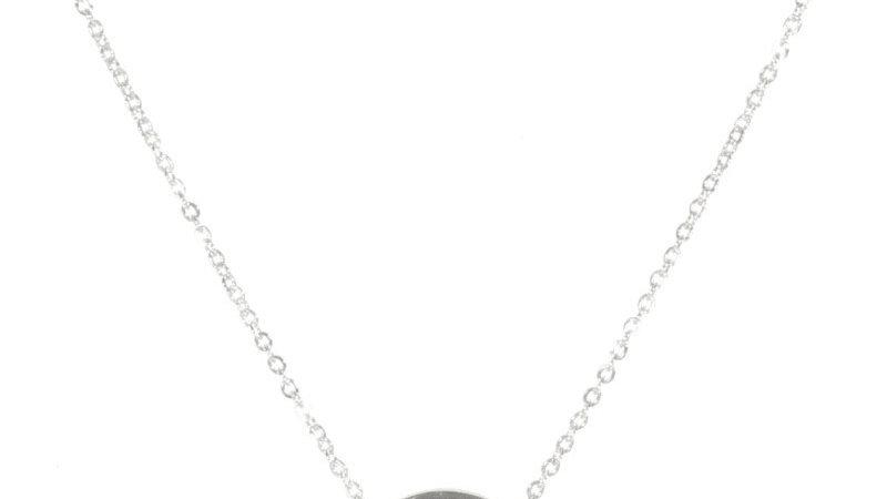 Collier avec pendentif arbre de vie en acier argenté