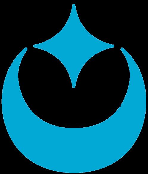 Celestar Design Logo FInal NO NAME NEW.p