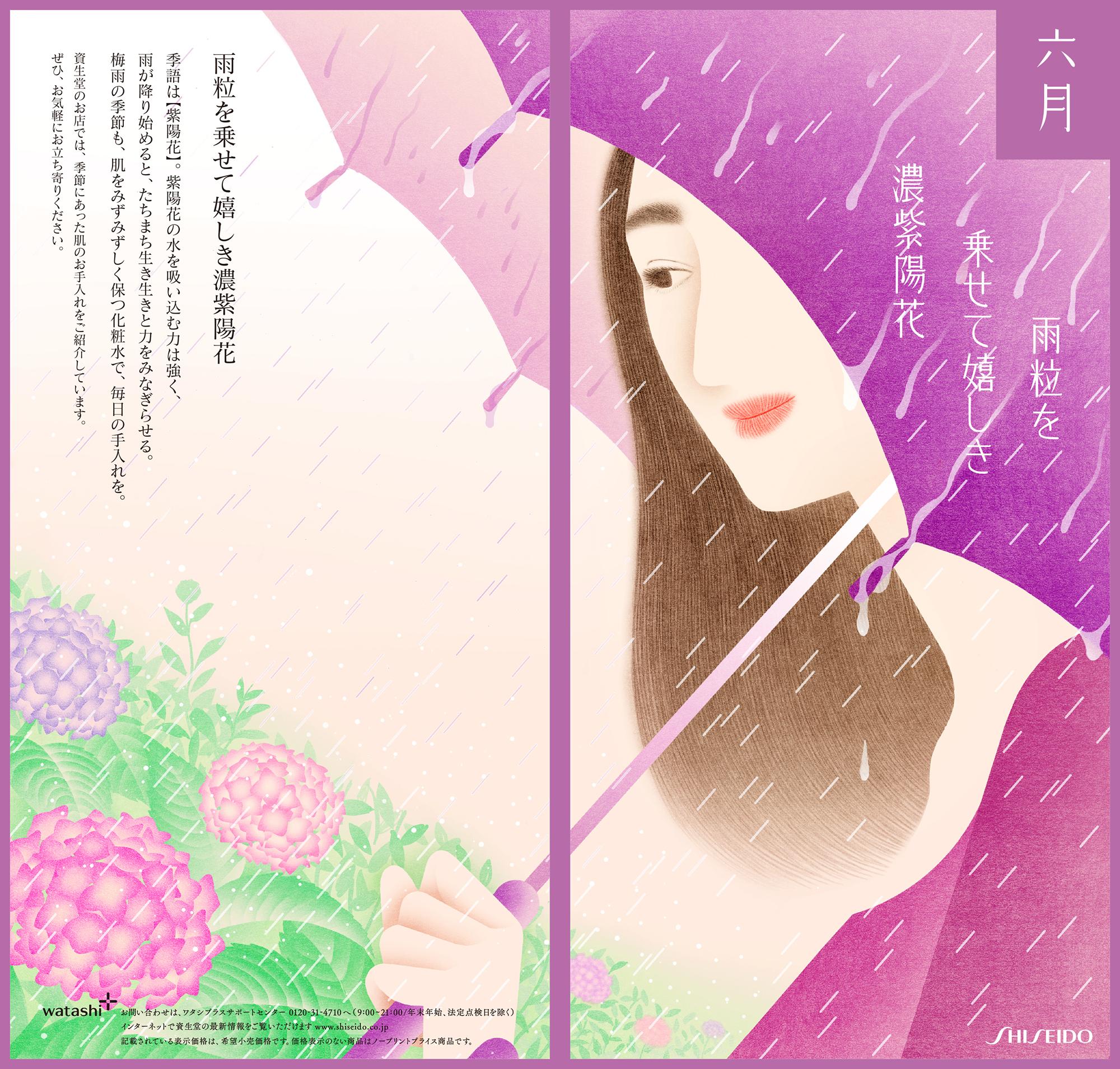 資生堂プロモーションDM 6月