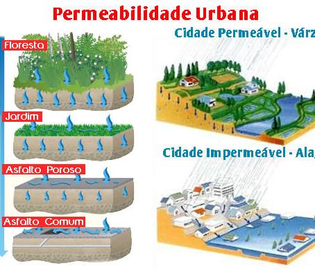 Arch Hoje: Arch Sustentável - Taxa de permeabilidade do terreno