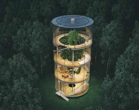 Arch Hoje: Arch Inspirações e Energia- Casa em volta da árvore