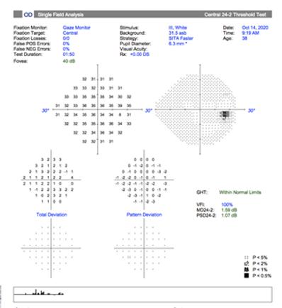 Neuro-Ophthalmology 13-2.png