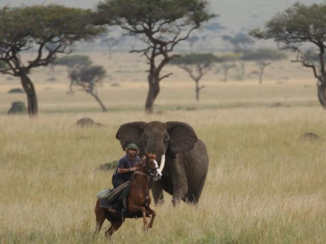 Jakotango Safaris