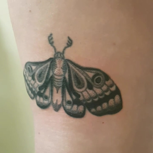 Hand Poked - Moth Tattoo