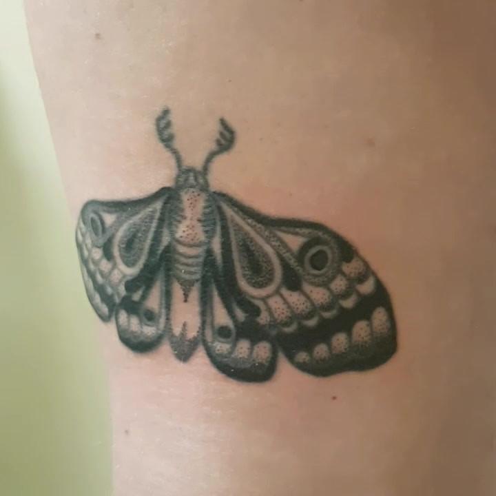 Hand Poked - Moth Tattoo