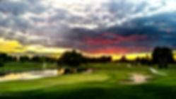 willow sunset02.jpg