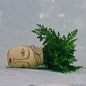 Pure Milk_Garden Anxiety_Cover Art (1).j